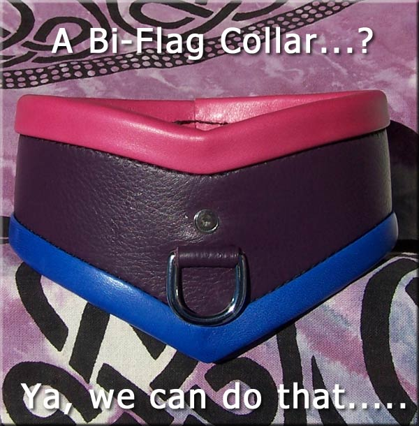 bi sexual flag made into a collar colors sub collar submissive collar pet slave